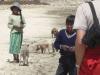 Schweine- und Schafhirten am Strand
