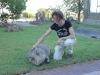 Auf der Gariganus-Farm hatten wir Gelegenheit Warzenschweine und