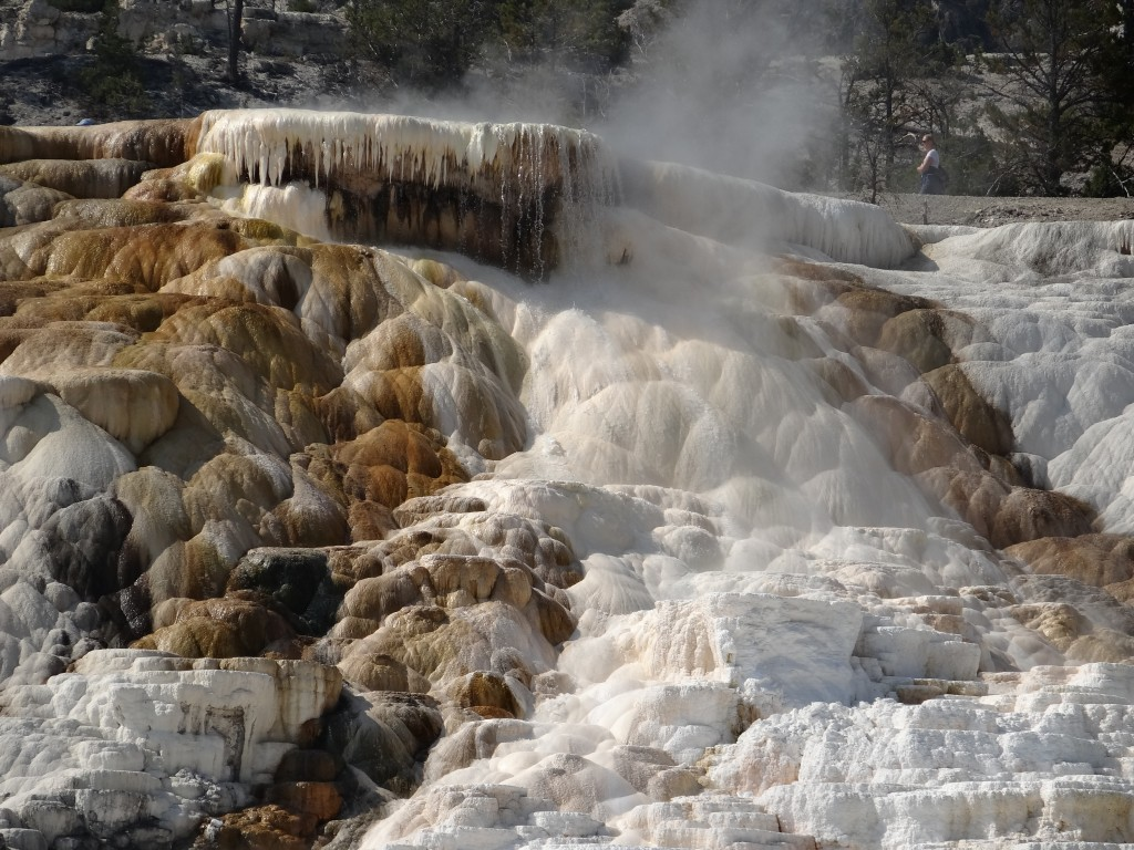 Mammoth Hot Springs am Nordeingang