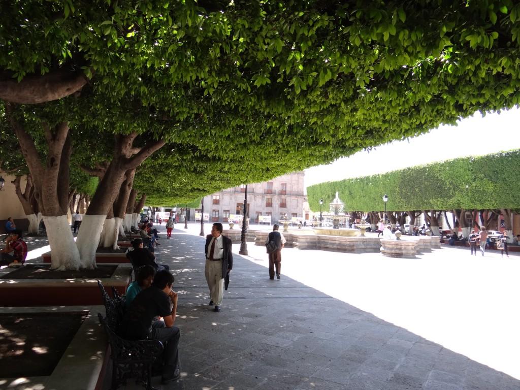 perfekter Sonnenschutz auf den vielen Plazas