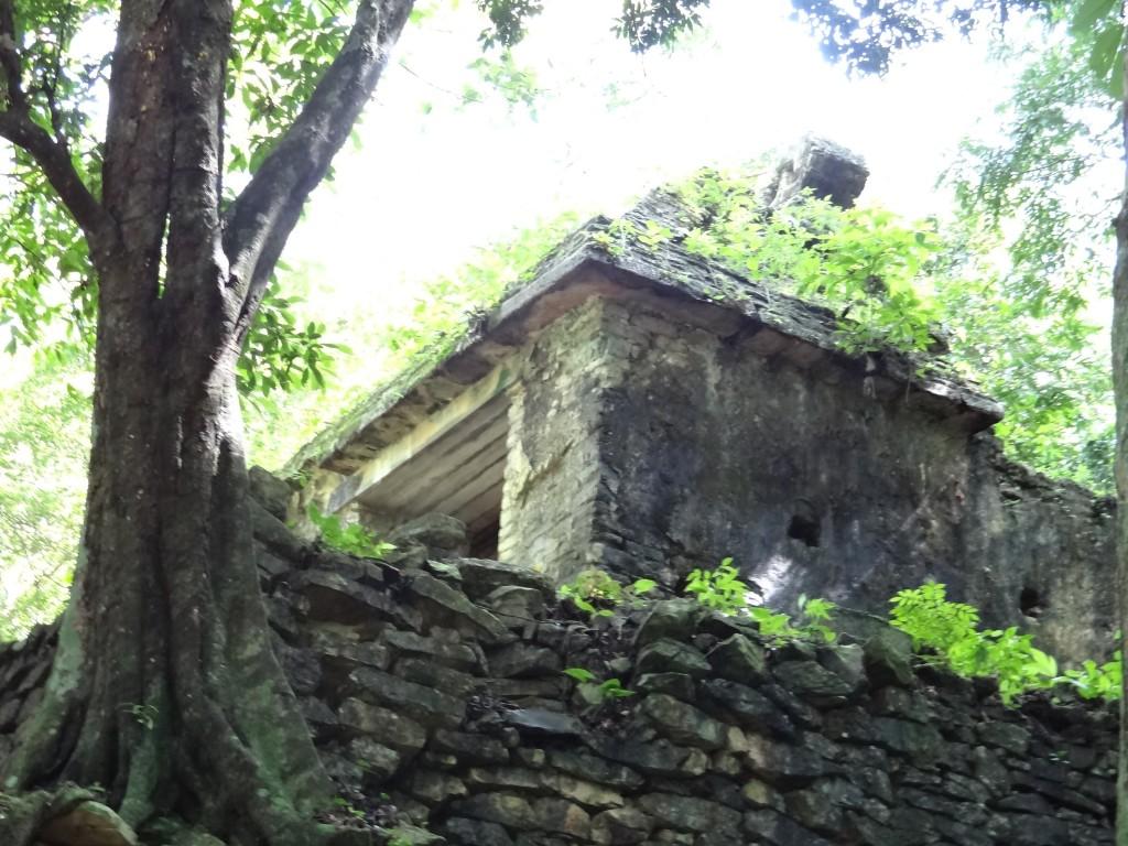 el Templo Perdido tief im Dschungel