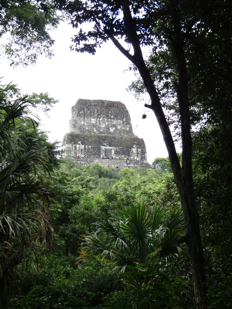 Templo IV