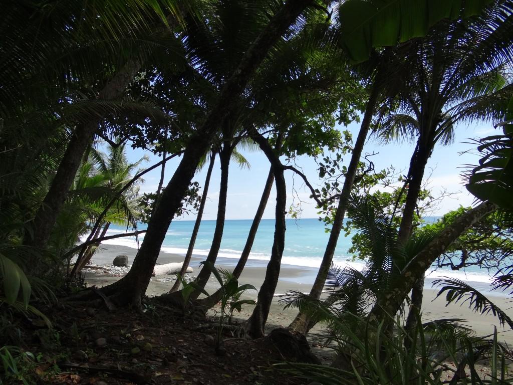 gelegentlich verlief der Pfad in Strandnähe