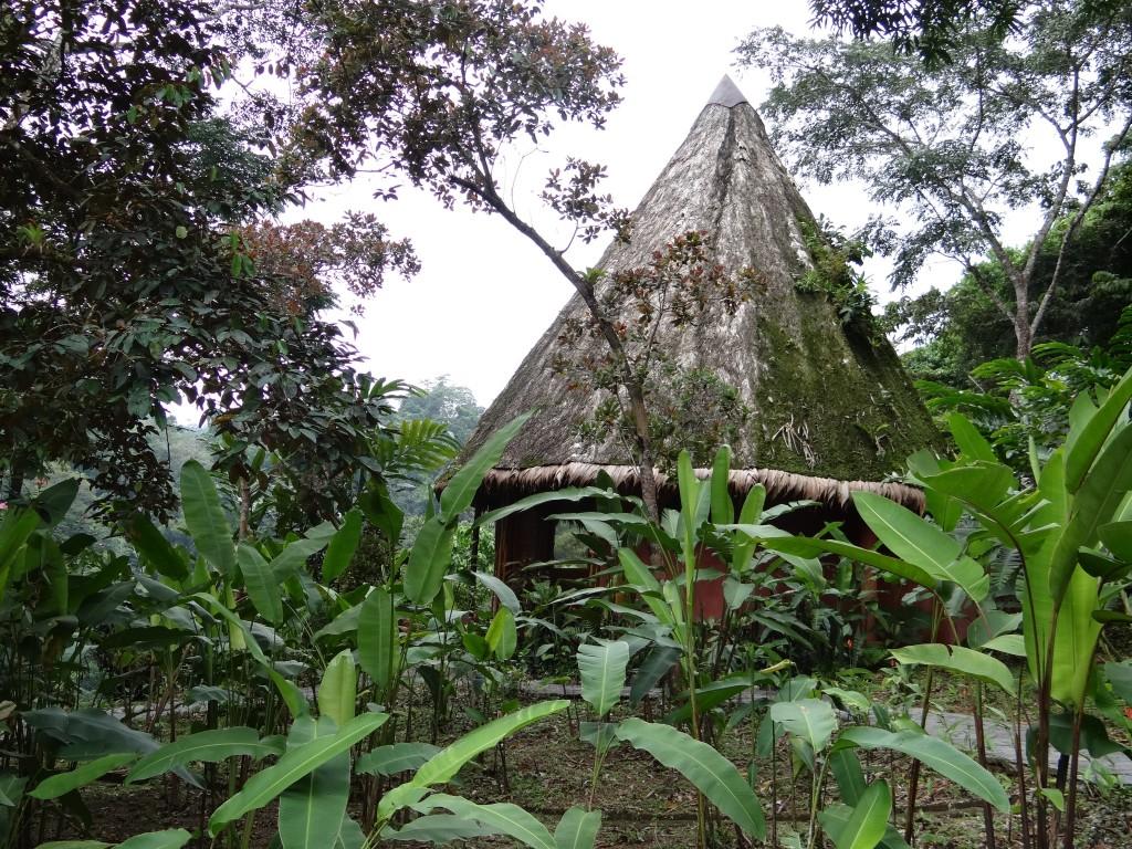 upgegradete Dschungel-Hütte
