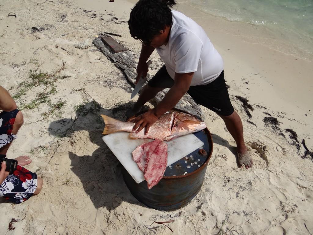 """""""Pesca del Día"""""""